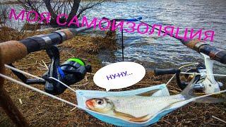 Трудовая рыбалка на водохранилище Фидерная ловля с берега Ни слова про короновирус Feeder fishing