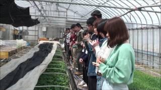 新潟農業・バイオ専門学校 新潟 農業 バイオ 園芸 校外見学