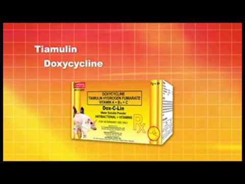 prophylactic doxycycline for tick bite