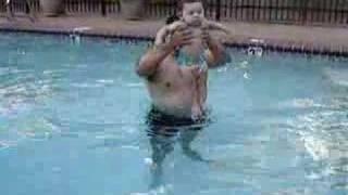 Baby Sea Otter Swimmer