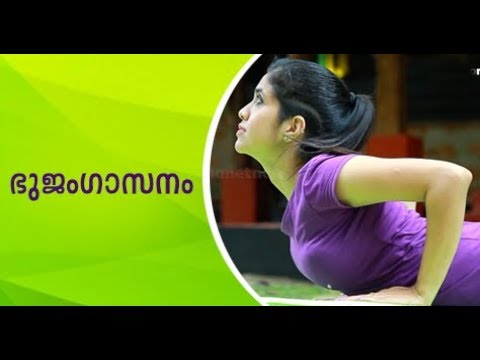 Yoga Videos Youtube Malayalam Yogawalls
