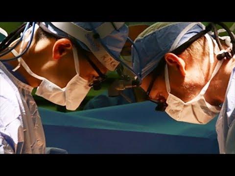 University Of Utah Health - Transplant Potential