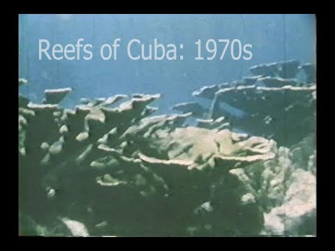Reefs of the Past: Cuba, 1970s