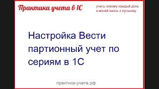 Партионный учет по сериям Часть 1. Практика-учета.рф
