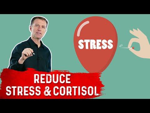 Chronic Stress Literally Destroys Immunity