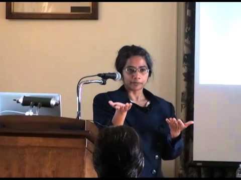 CSES Lecture Series: Monica Prasad, Northwestern