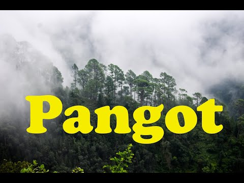 Pangot Time Lapse (4K 60fps) | 5.1 Channel Sound |Nainital | Cloudy Sky | Satisfying | Calm | Forest