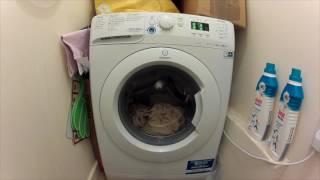 indesit xwa81682xwuk full cycle washing bed sheets