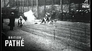 The Dogs Derby (1920)