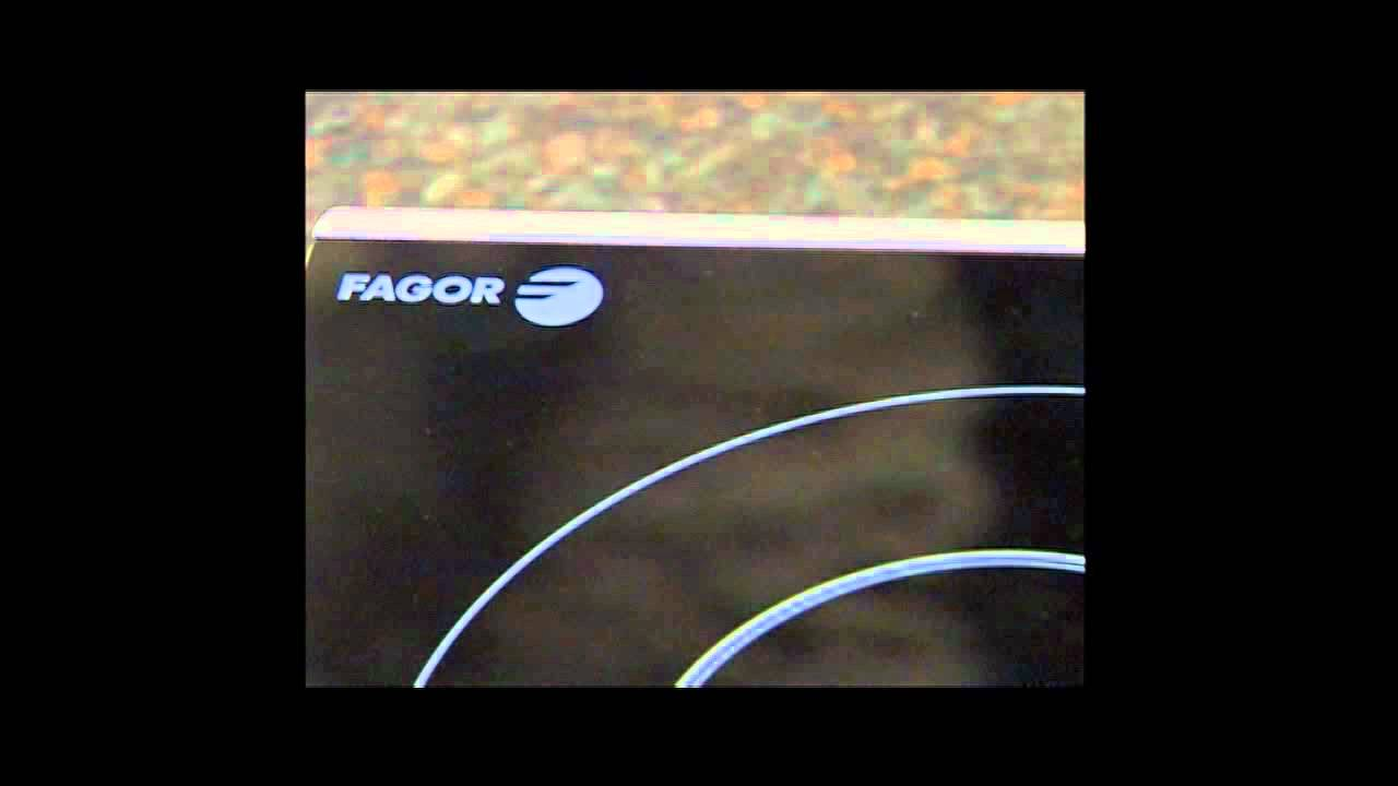 Fagor Portable Induction Cooktop 101