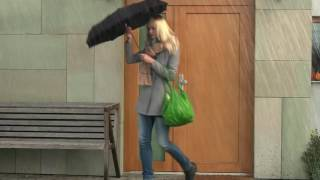 ŠKODA Superb   Umbrella