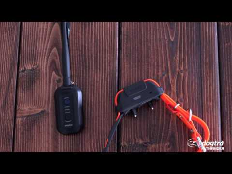Dogtra Pathfinder GPS E-Collar – Getting Started