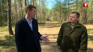 Министр лесного хозяйства Виталий Дрожжа. Интервью