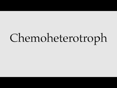 How to Pronounce Chemoheterotroph