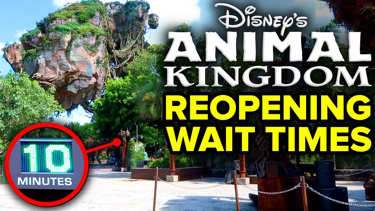 Disney's Animal Kingdom REOPENING WAIT TIMES, Rivers of Light OVER + 100K SUBSCRIBERS! 🎉