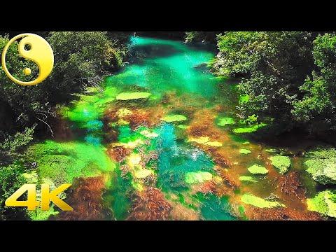Musique Relaxante avec Nature Magique ► 8 Relaxing Music, 4K Beautiful Nature, Violin, Flute, piano