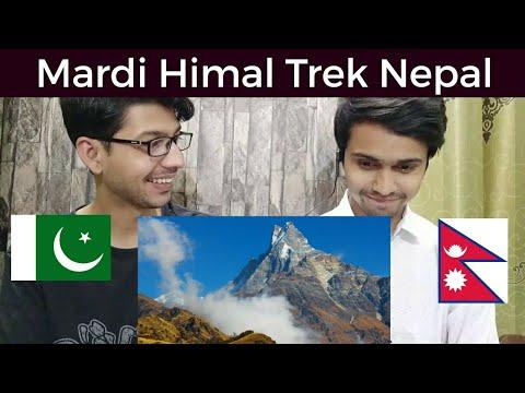 Pakistani Reaction Mardi Himal Trek | Beautiful Nepal 🇳🇵