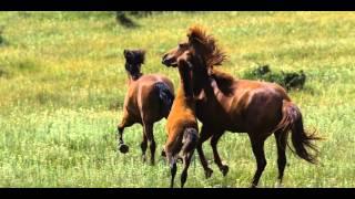 Горы Кавказа- Патимат Кагирова