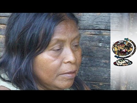 Tribe Faces Extinction Over Colombian Oil Reserves (2001)