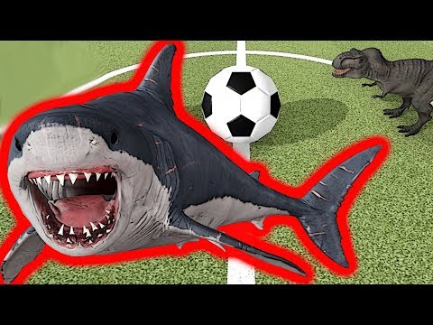 Dev Köpekbalığı MEGALODON