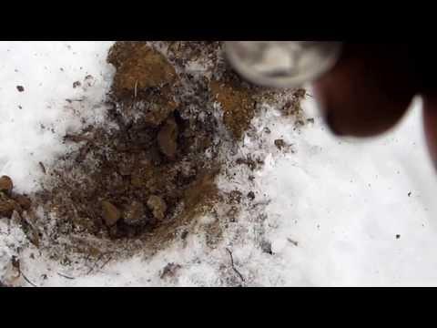 Metal Detecting Northeast Ohio Winter Edition (Wadsworth)