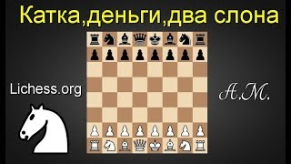 [RU] Катка, деньги, два слона №21 на lichess.org ШАХМАТЫ.Андрей Микитин.