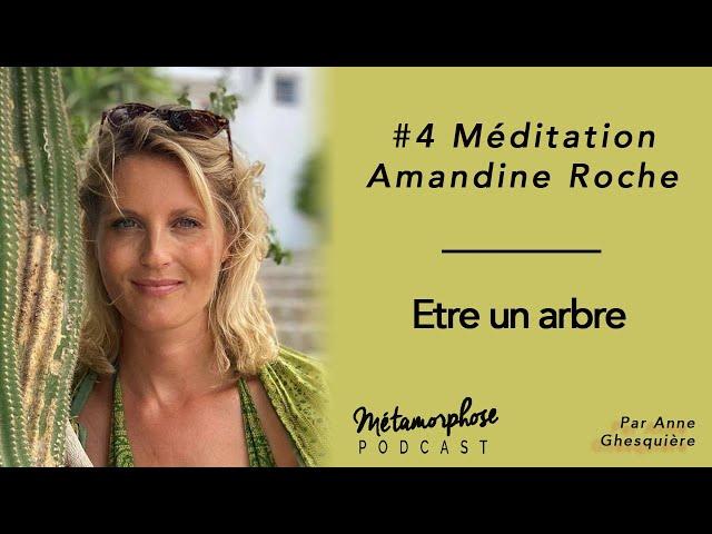 #4 Méditation - Amandine Roche : Etre un arbre