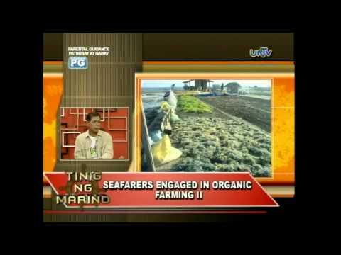 TINIG NG MARINO 93 -  Seafarers engage in organic farming II