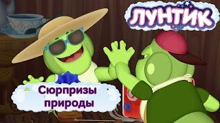Лунтик и его друзья - Сюрпризы природы. Лето 2016(, 2016-08-19T09:00:00.000Z)