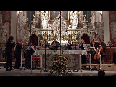 Johann Zach   Sinfonia in G