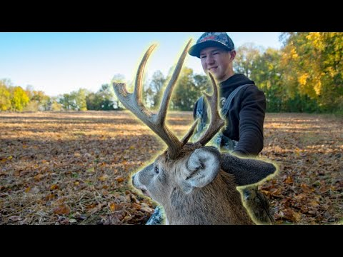 Youth Bow Hunting Success! (Buck Down)