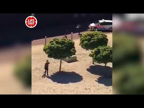 Мужчина с ножом набросился на посетителей кафе в Гааге