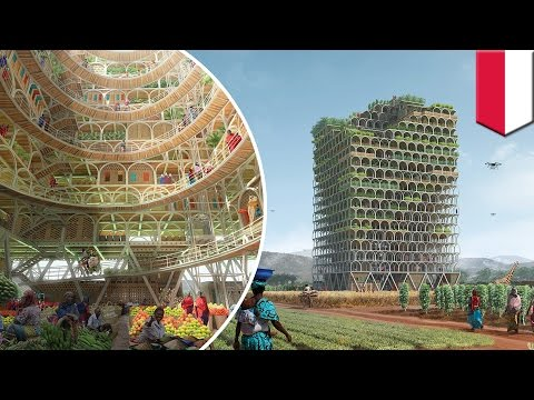 Skyscraper Competition 2017: Moveable Mashambas Skyscraper wins first place - TomoNews