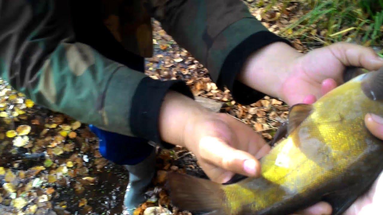 Рыбалка на малька в ленинградской области
