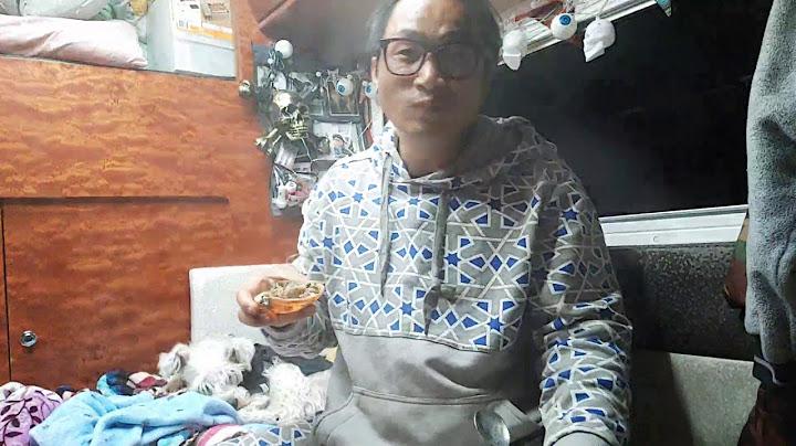 경북울진/기성망양해수욕장/정박/껍데기대게살비빔밥/해물짬뽕탕먹방~👍