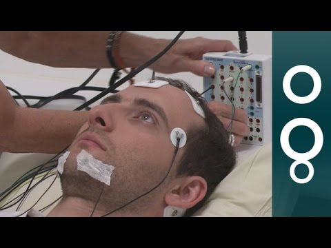 Why Don't We Sleep? - euronews knowledge  - DMw5CS7T8eA -