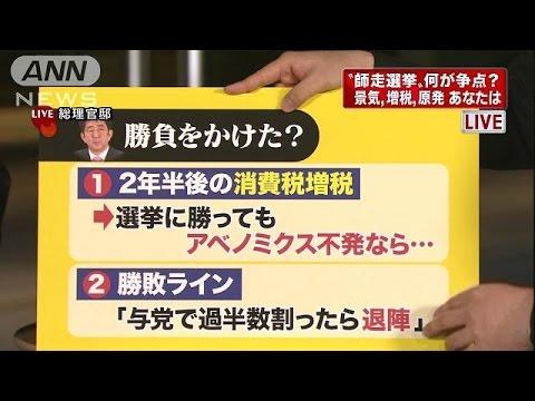 """""""師走選挙""""安倍総理はなぜ勝負に?記者解説(14/11/21)"""