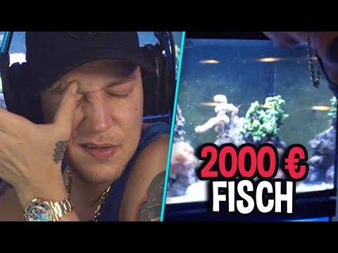 2.000€ Fisch verloren! 😱 Neue Twitch-Rekorde | MontanaBlack Highlights