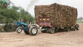Tractor Stunt | Ford 4600 & Belarus 510 Pulling out Heavy loaded Trailer