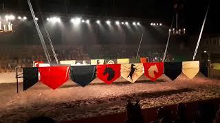 Рыцарский турнир в Сочи