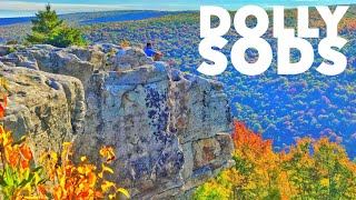 Hiking and Hammock Camping the Dolly Sods Wilderness, West Virginia
