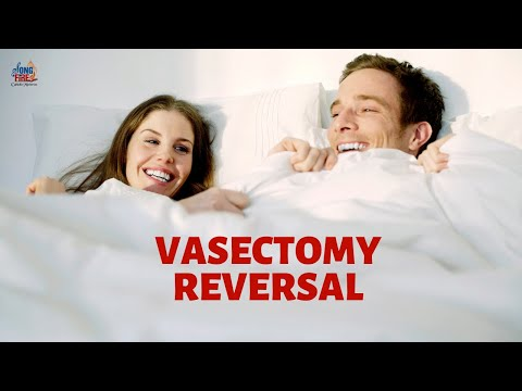 vasectomy-reversal-pregnancy:-how-a-catholic-couple-became-pregnant-after-reversal|kate-nottingham