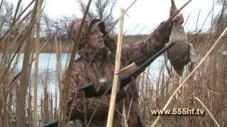 Охота. Охота 2013. Видео охота. Смотреть охота. Оружие. Охотничьи ружья. Ружьё. Охота на утку. Утка.