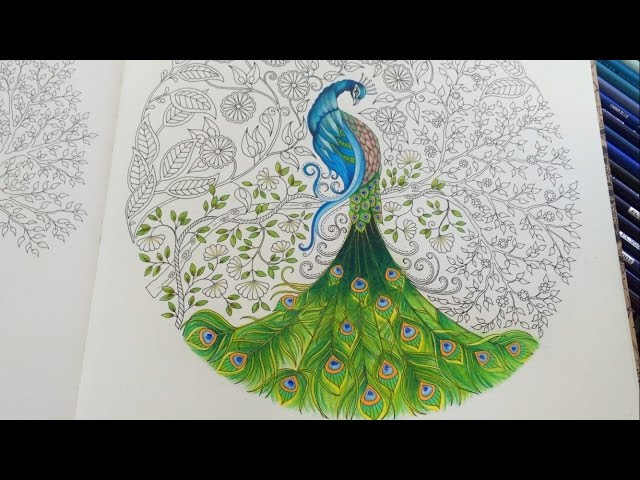 - Peacock (Part 3/3) Secret Garden Adult Coloring Book Coloring With  Colored Pencils - YouTube