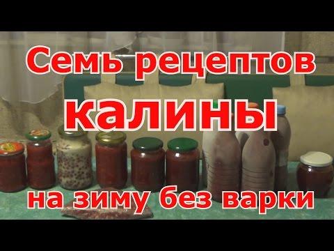 Семь рецептов калины на зиму без варки