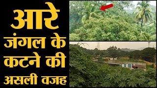 Supreme Court ने Mumbai के Aarey Forest में पेड़ कटने पर देर से रोक लगाई? कॉलोनी की पूरी History