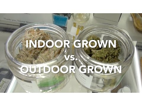 Indoor Grown vs. Outdoor Grown by Cannabis Frontier | ASK A