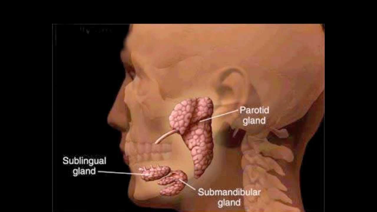 parotitis and salivary gland infections - YouTube