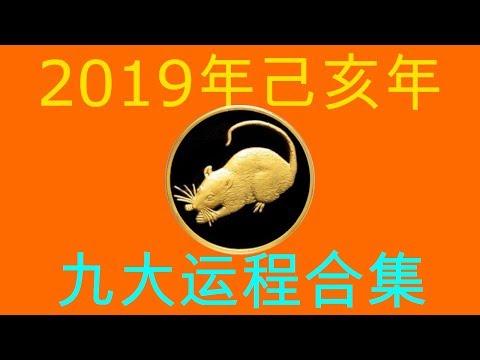 2019年己亥年九大运程大合集:肖鼠者
