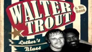 Walter Trout - Freedom